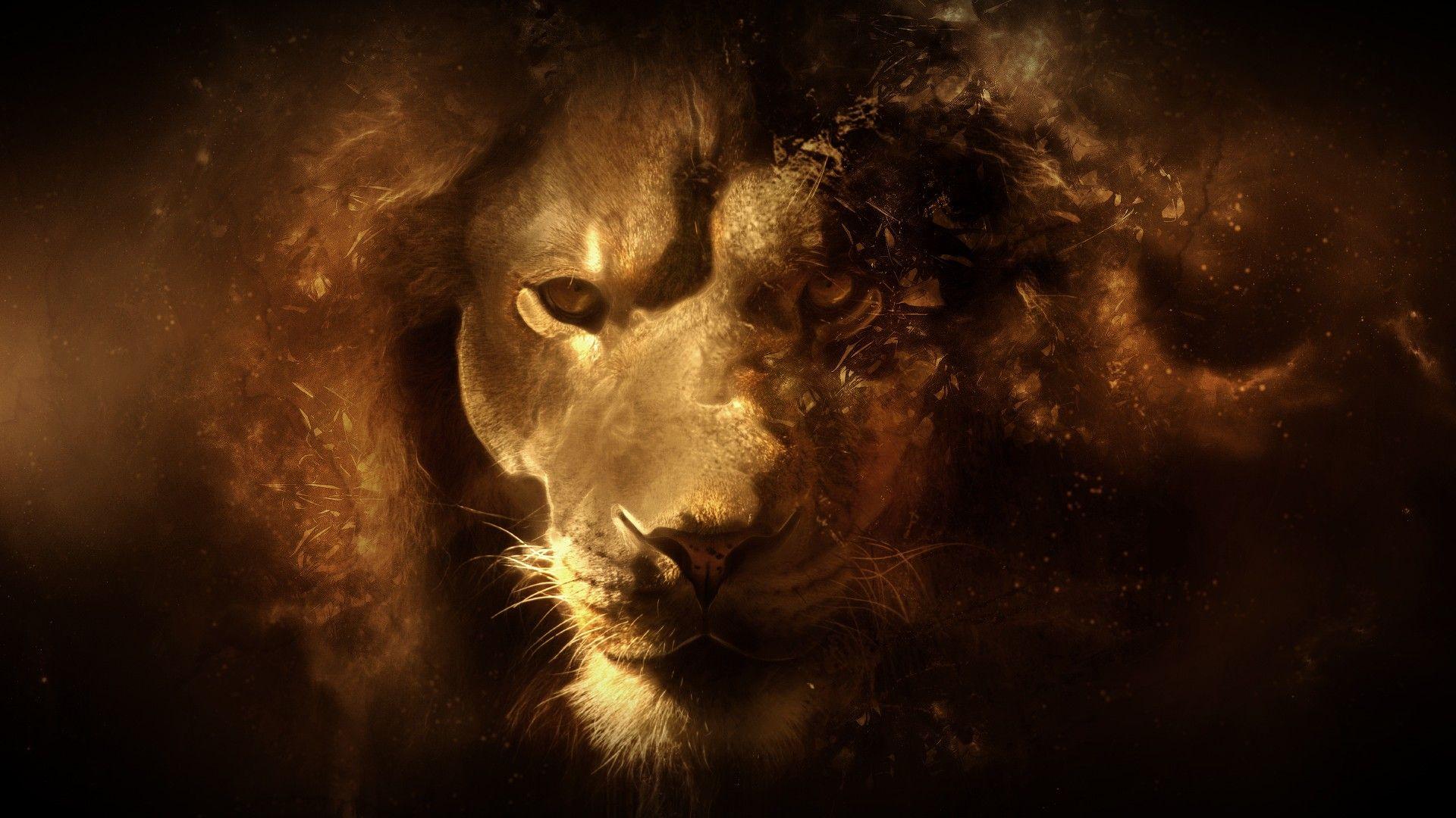 Lion Art Image