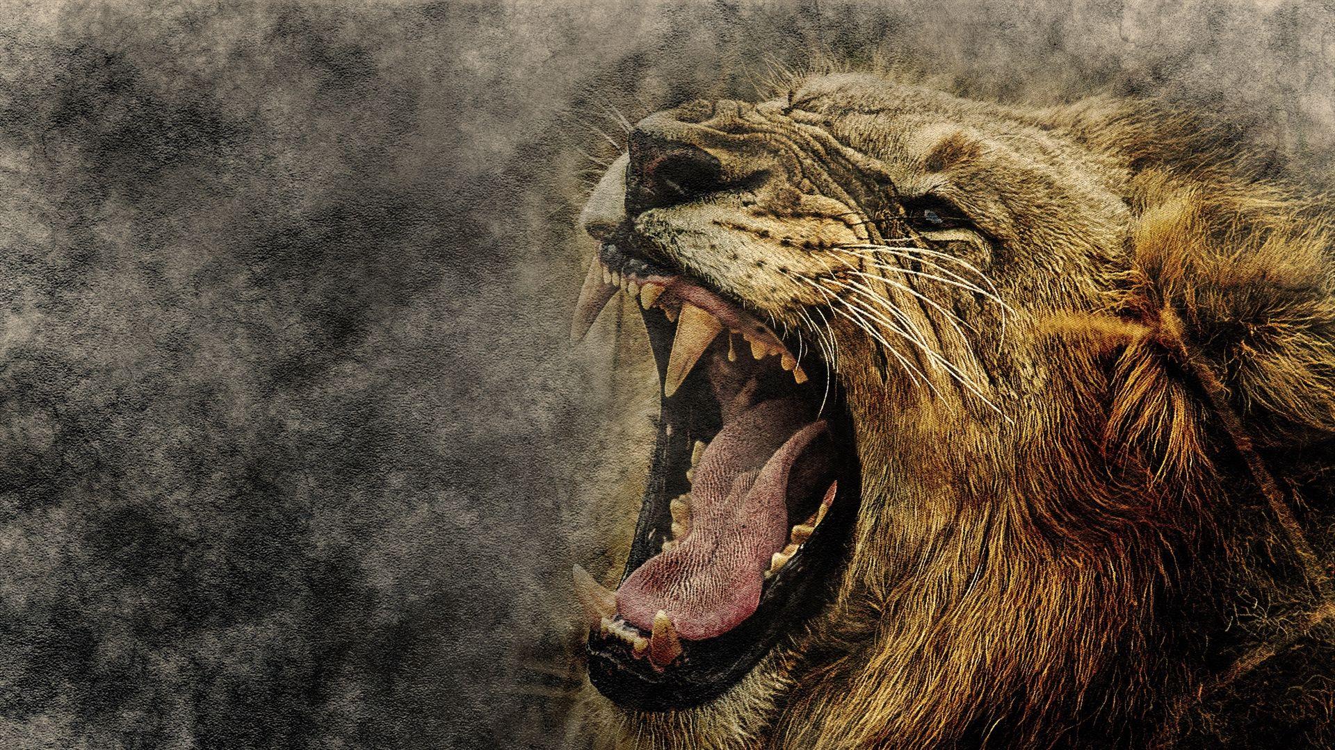 Lion Art Free Desktop Wallpaper