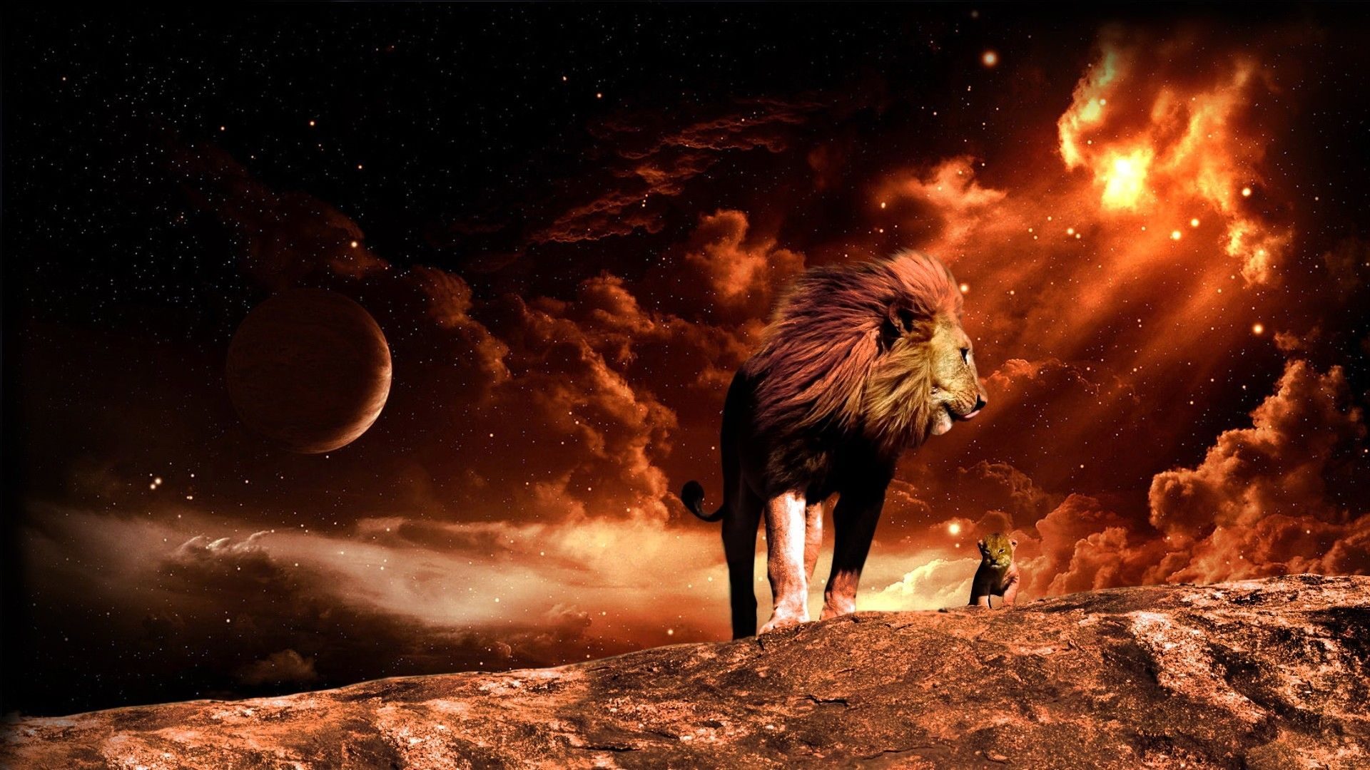 Lion Art 1920x1080 wallpaper