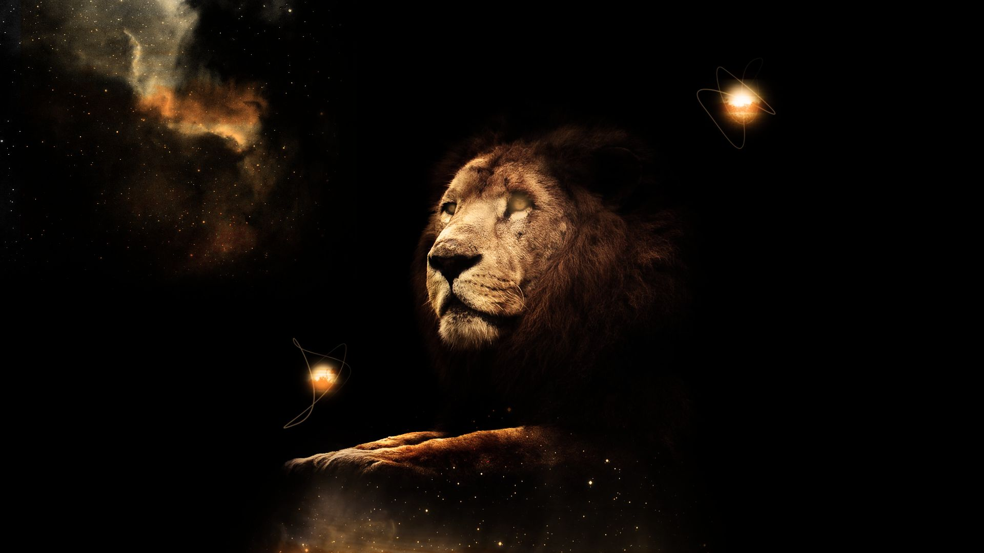 Lion Art laptop wallpaper