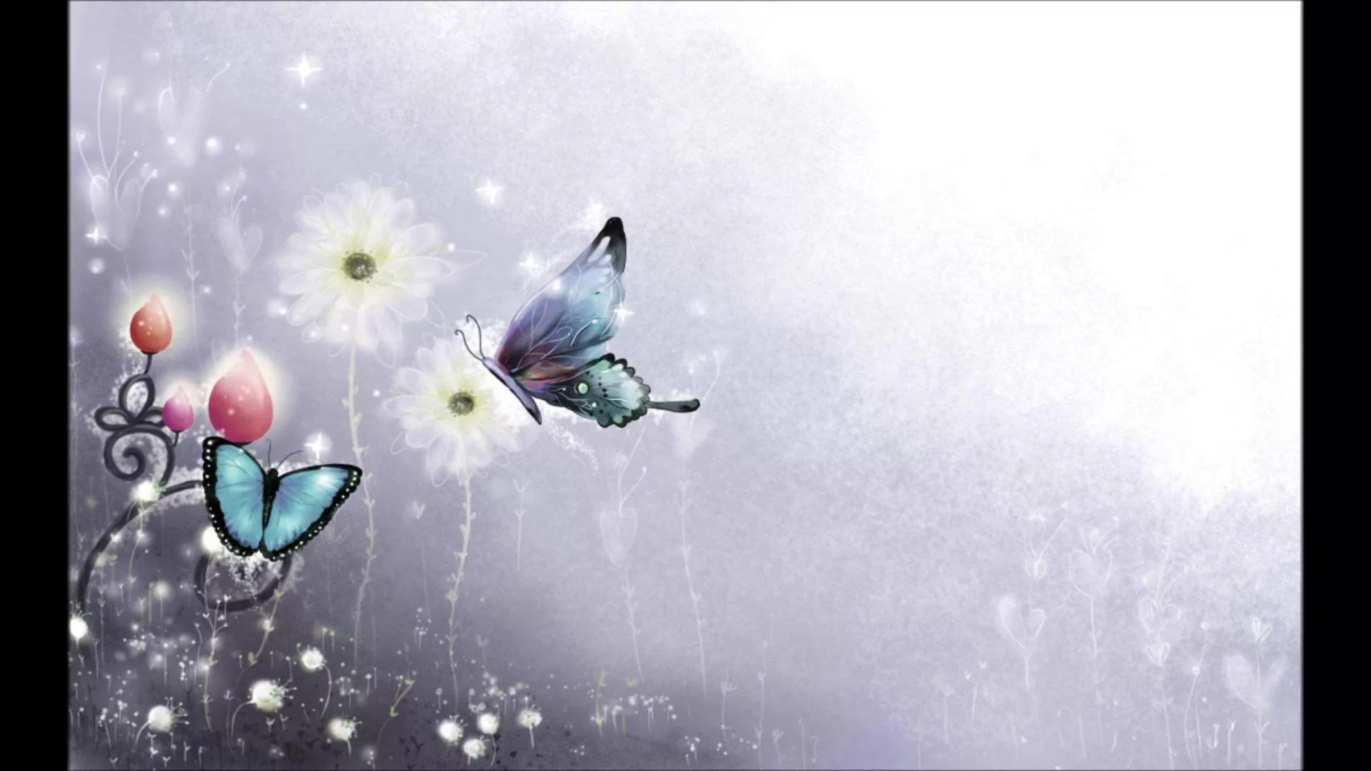 Nice Butterfly new wallpaper