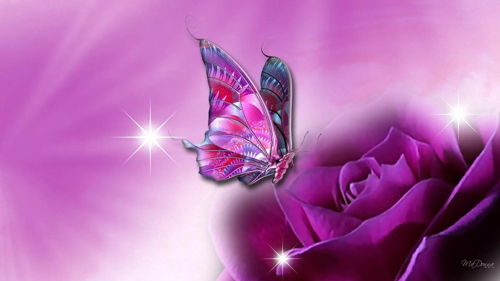 Nice Butterfly vertical wallpaper hd