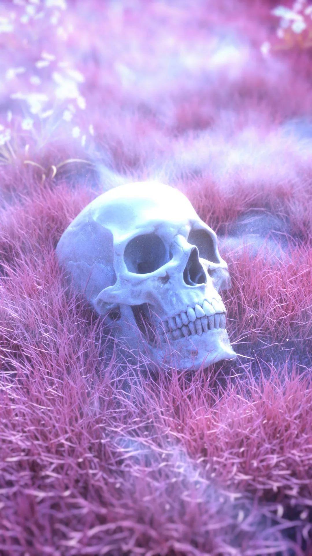 Skeleton iPhone 6 wallpaper tumblr