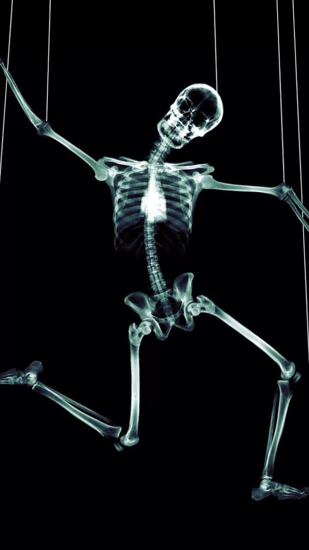 Skeleton Galaxy s9 wallpaper