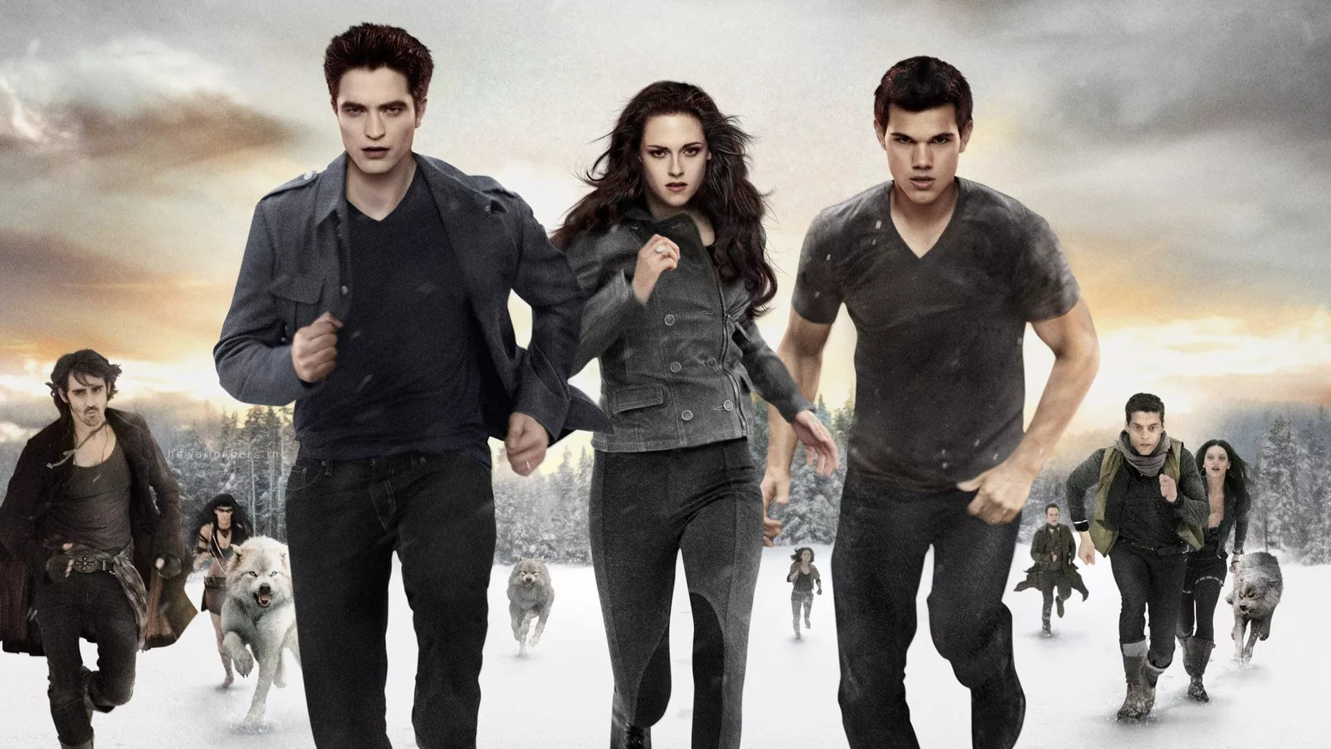 Twilight Saga wallpaper picture hd