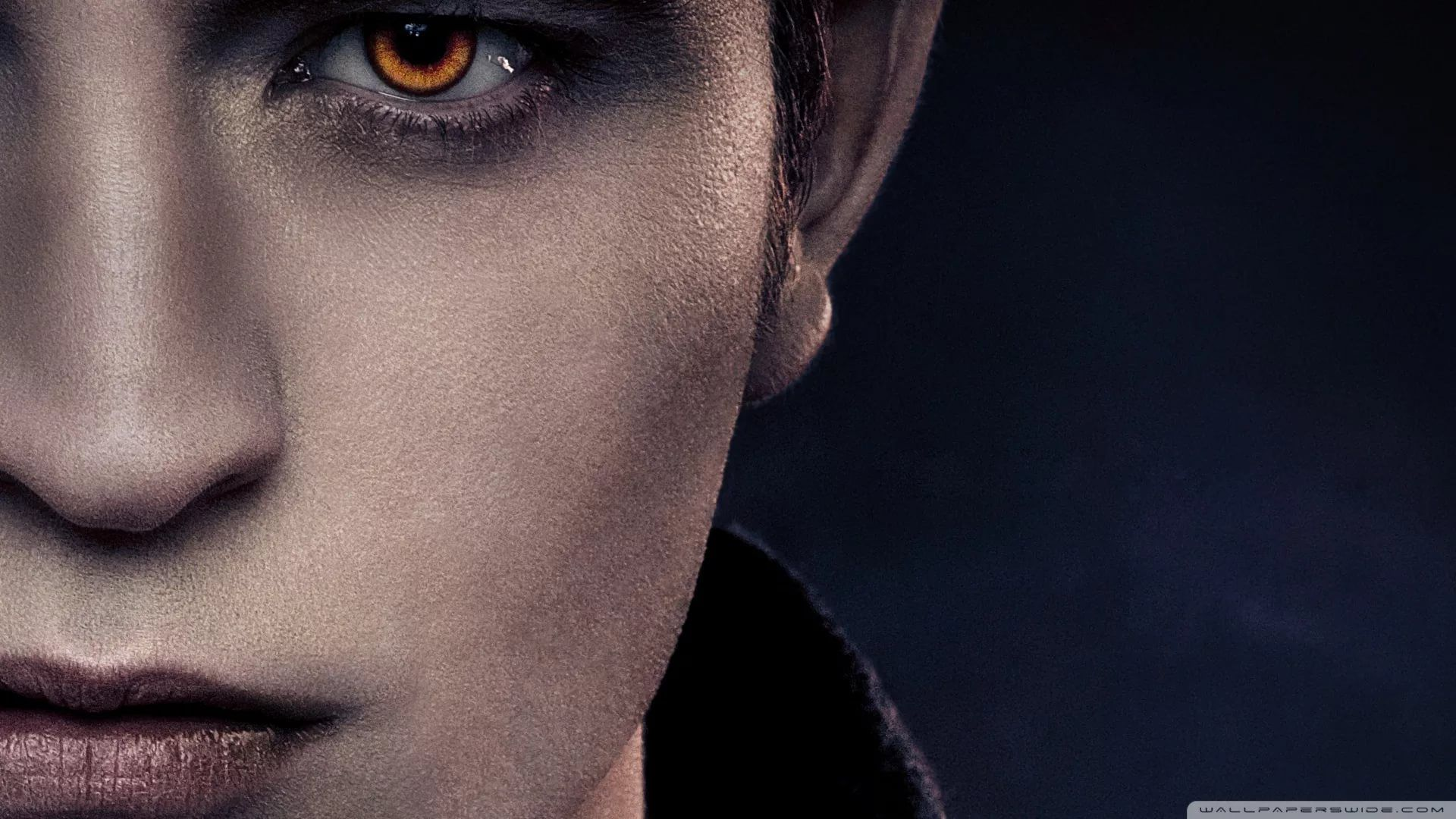 Twilight Saga 1080p Wallpaper