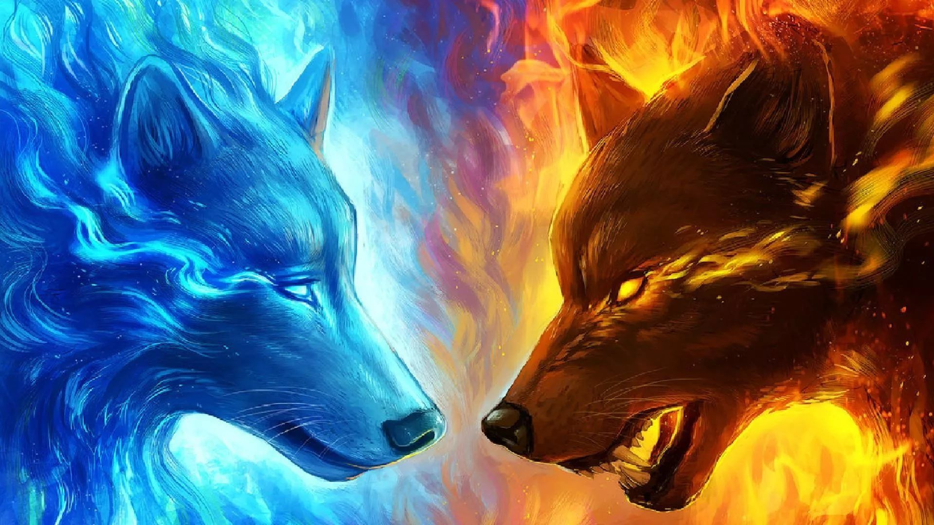 Cool Wolf download free wallpapers for pc in hd