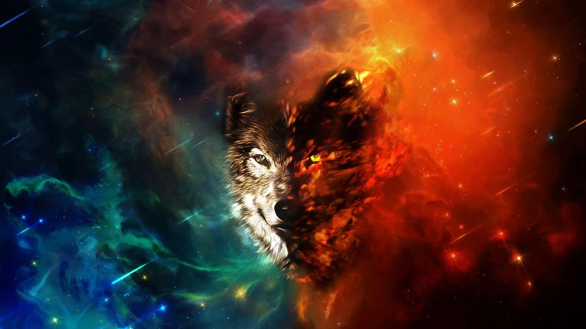 Cool Wolf desktop wallpaper download