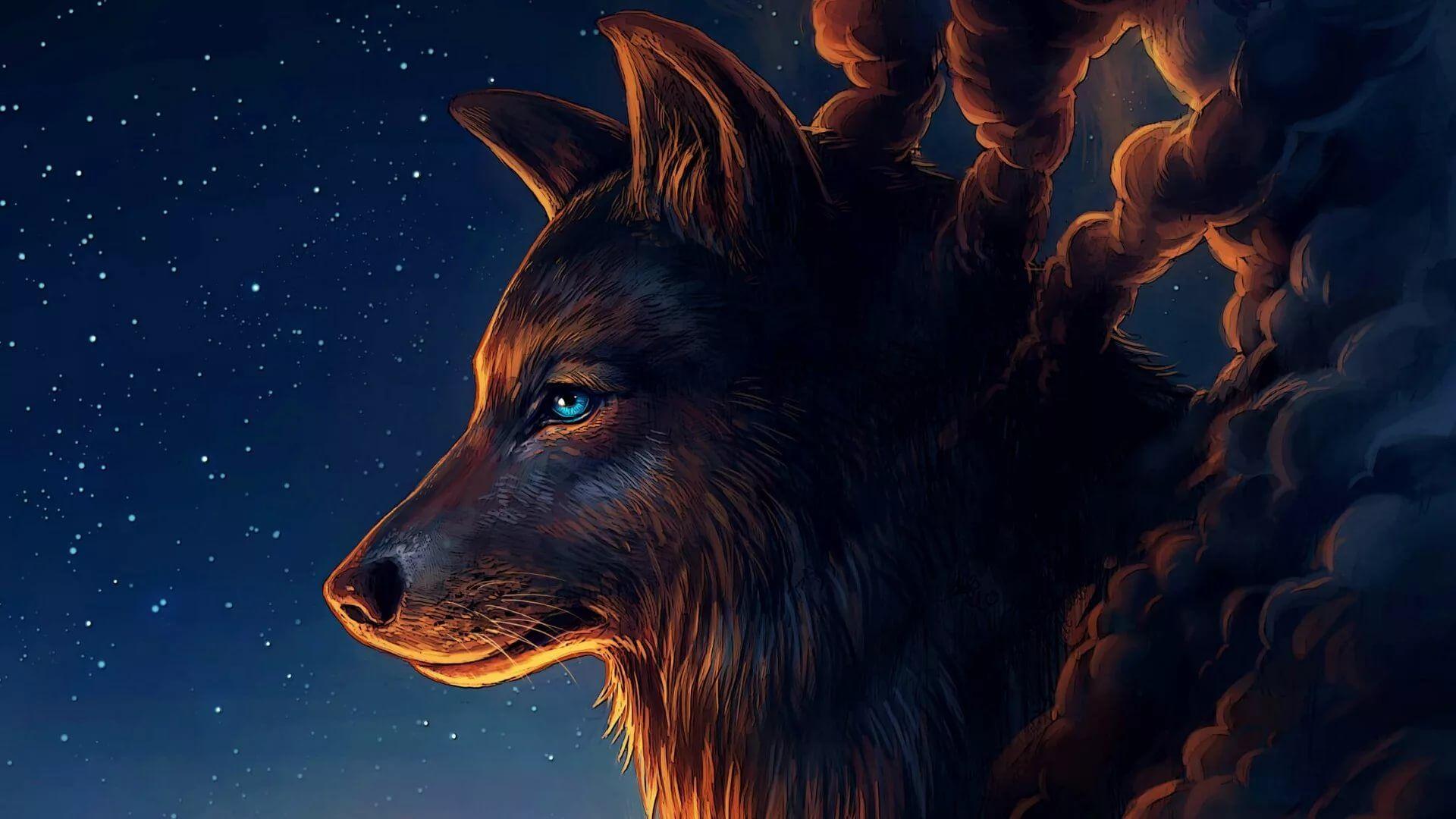 Cool Wolf HD Wallpaper