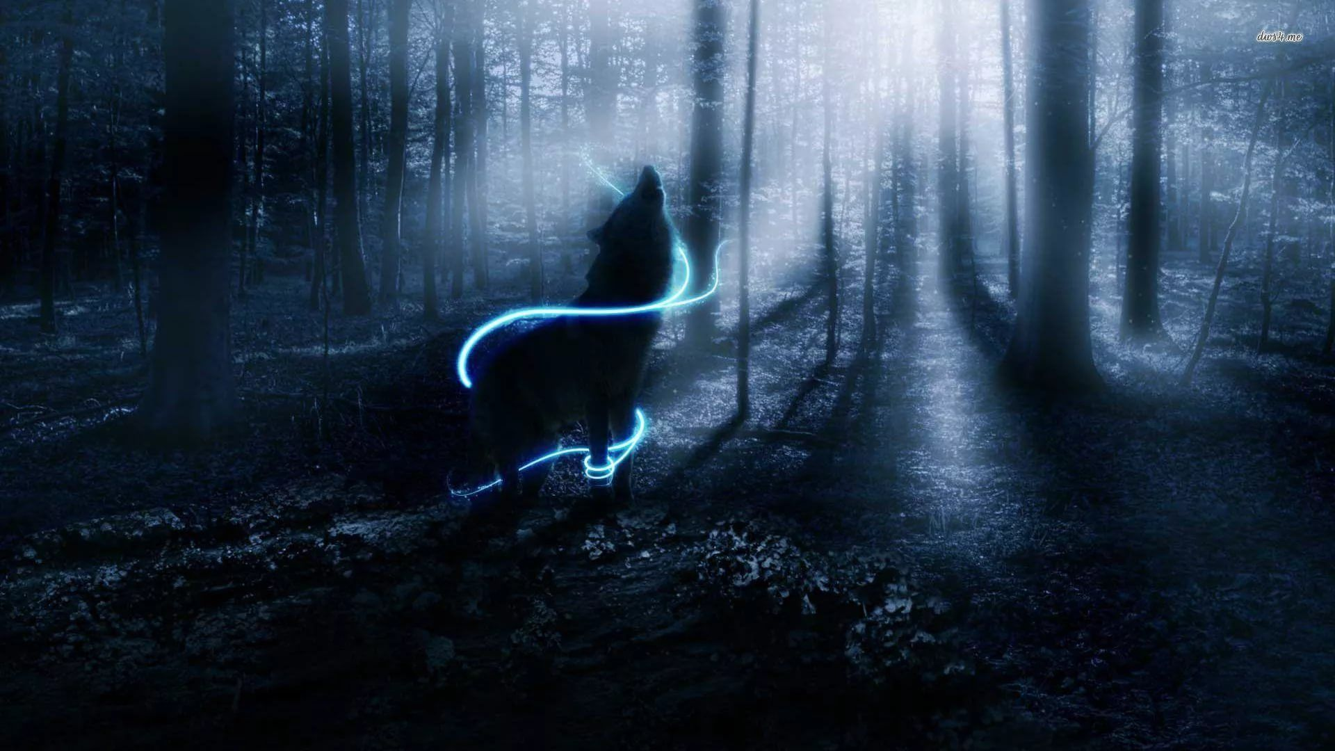 Cool Wolf Background Wallpaper HD