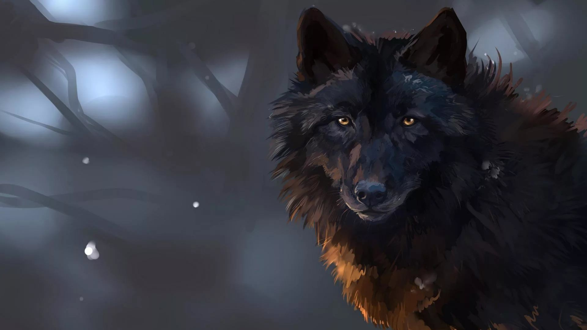 Cool Wolf wallpaper photo hd