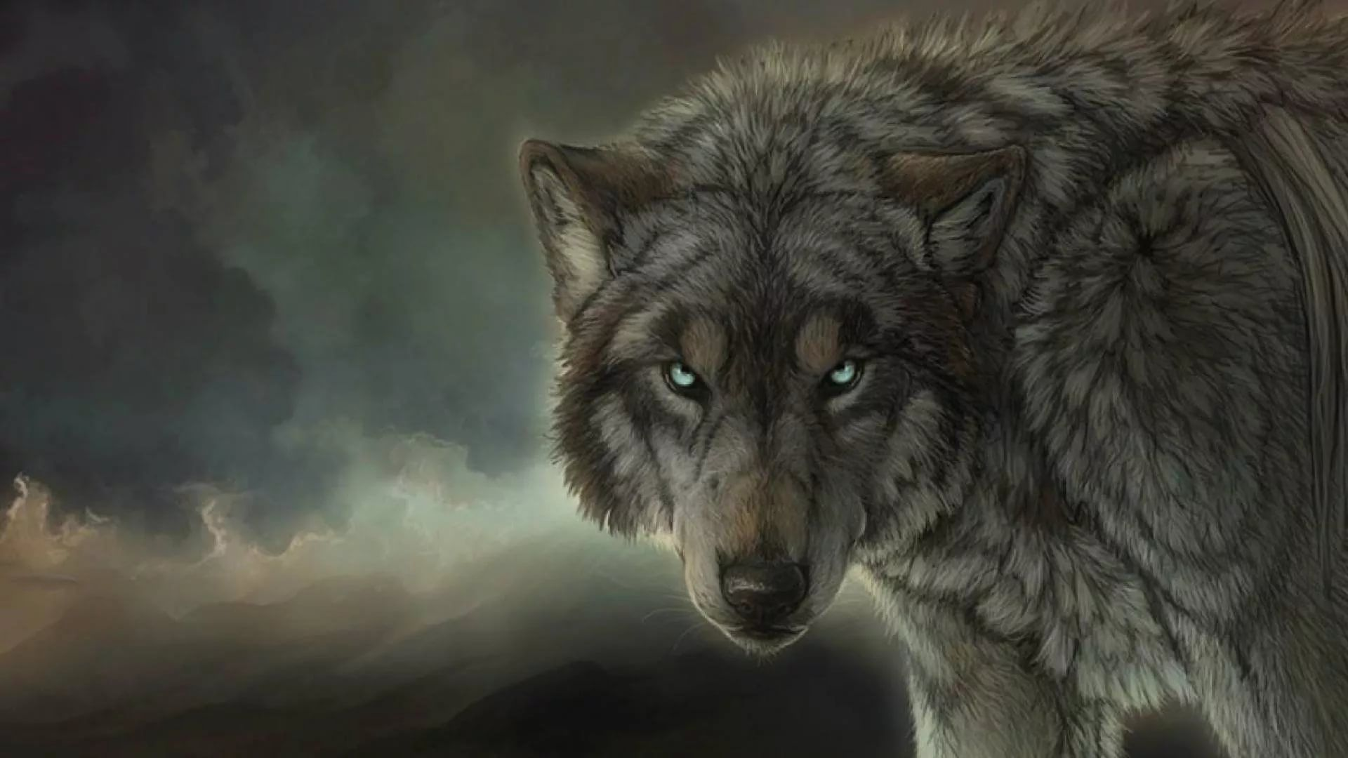 Cool Wolf Wallpapers 31 Images Wallpaperboat