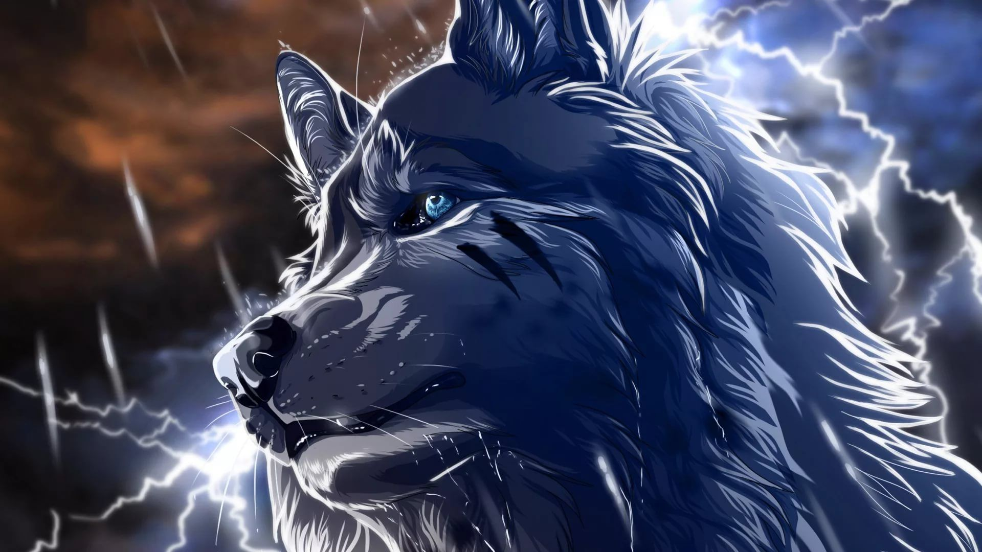 Cool Wolf hd wallpaper 1080p for pc