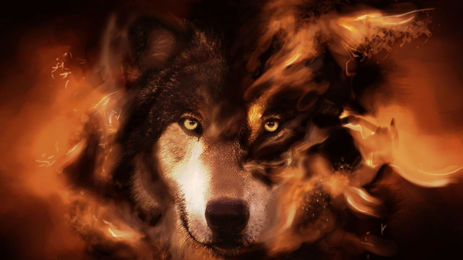 Cool Wolf desktop wallpaper