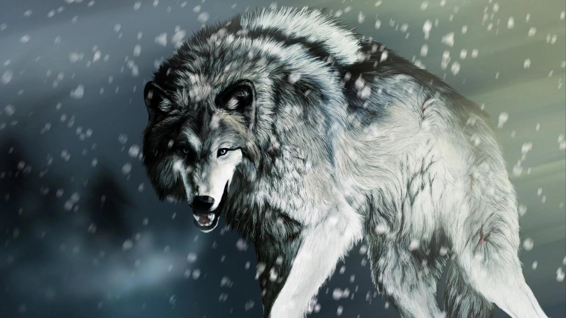 Cool Wolf PC Wallpaper