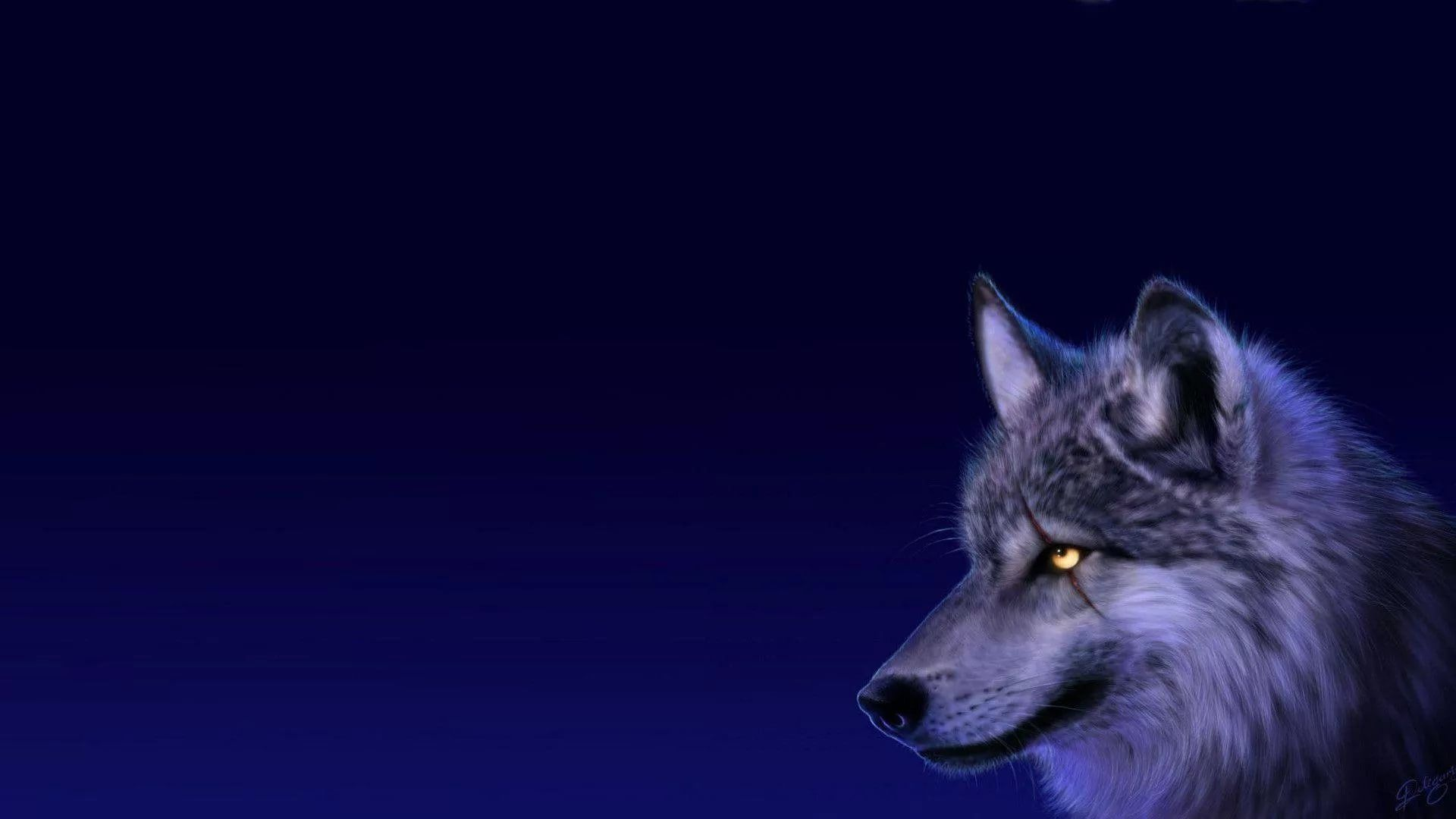 Cool Wolf Wallpaper Picture