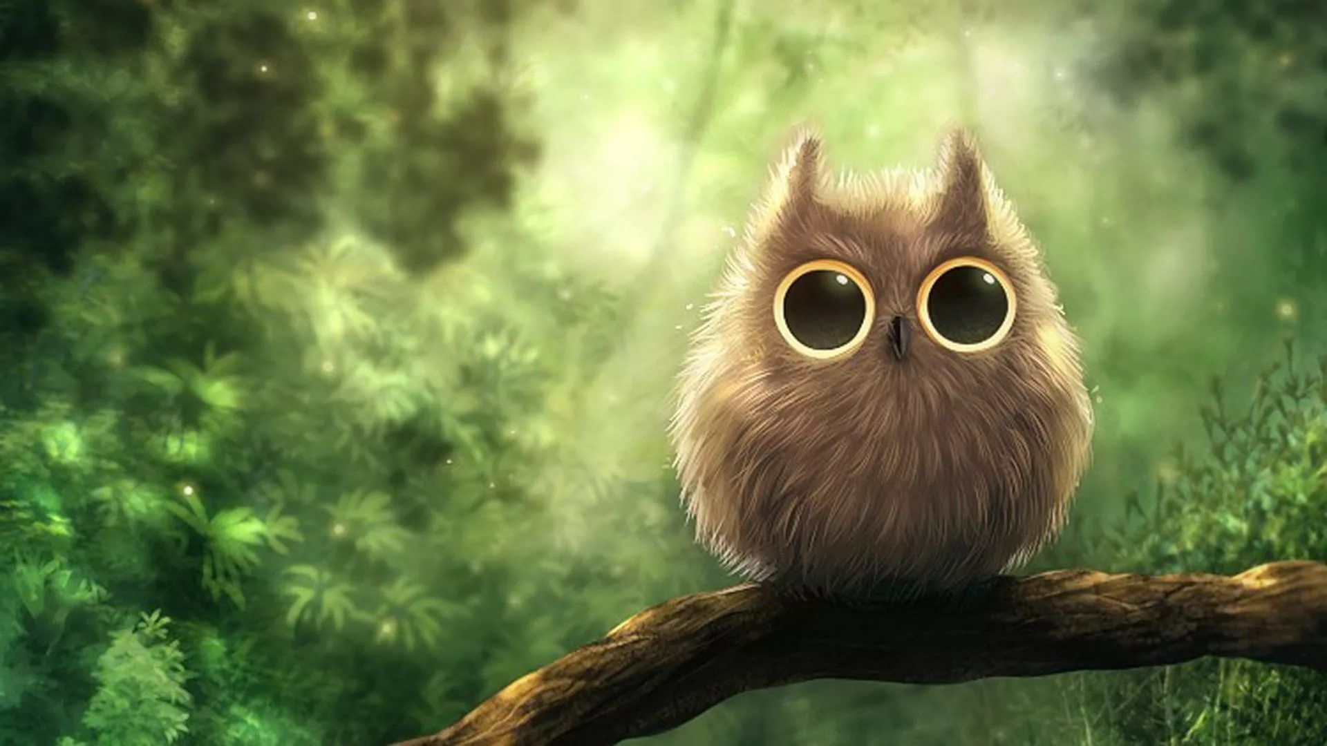 Cute Owl Wallpapers 27 Images Wallpaperboat