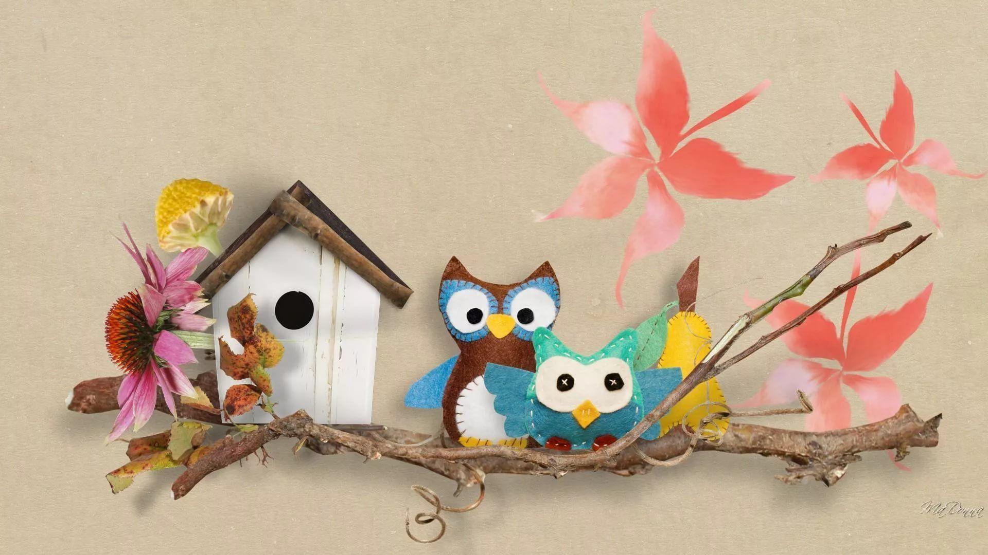 Cute Owl full hd wallpaper
