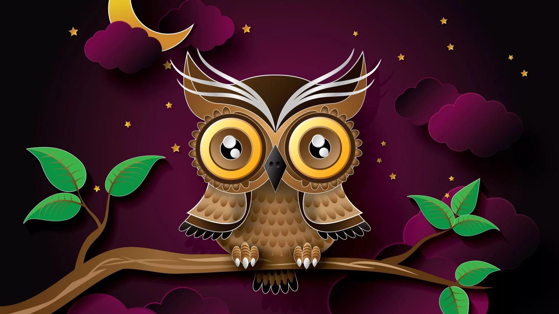 Cute Owl HD Download