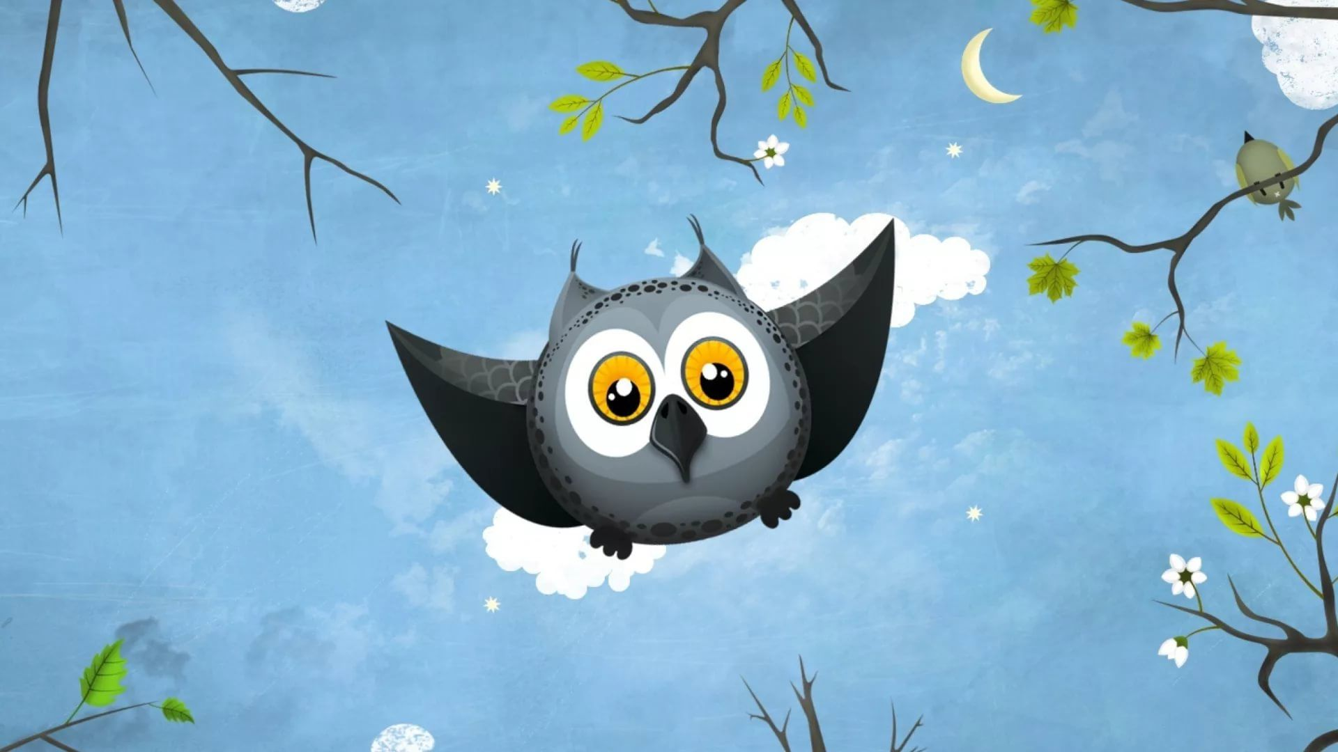 Cute Owl download free wallpapers for pc in hd