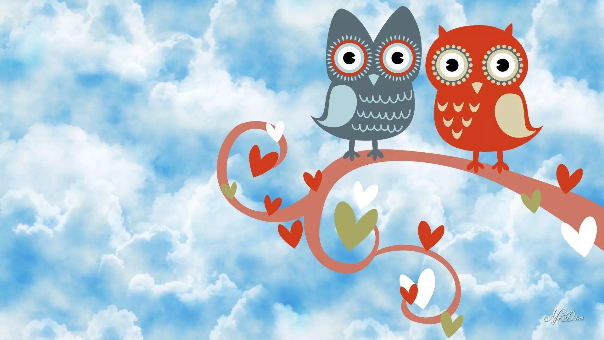 Cute Owl screen wallpaper
