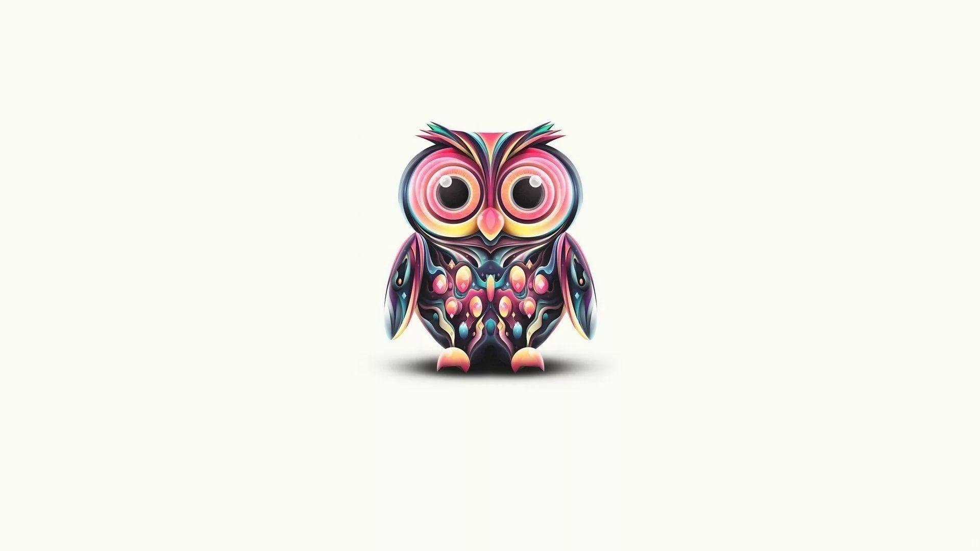 Cute Owl hd wallpaper download