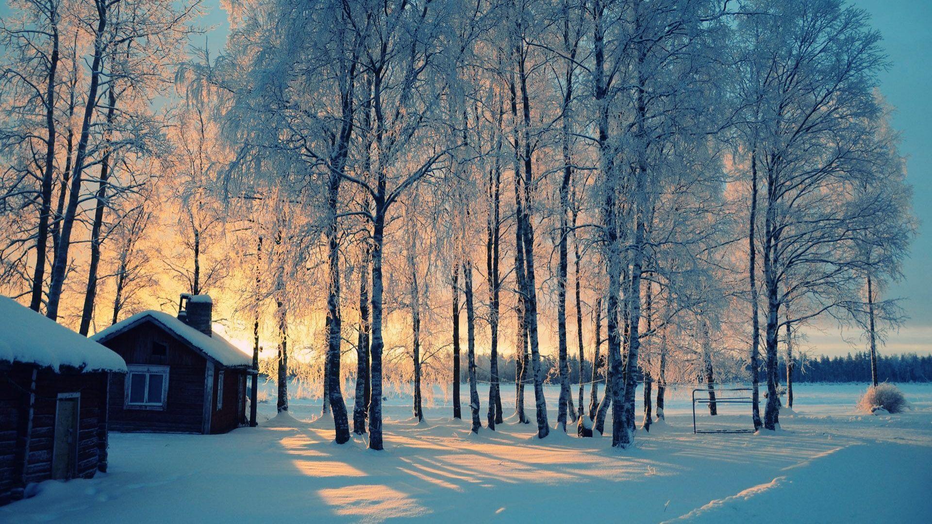 Cute Winter Picture