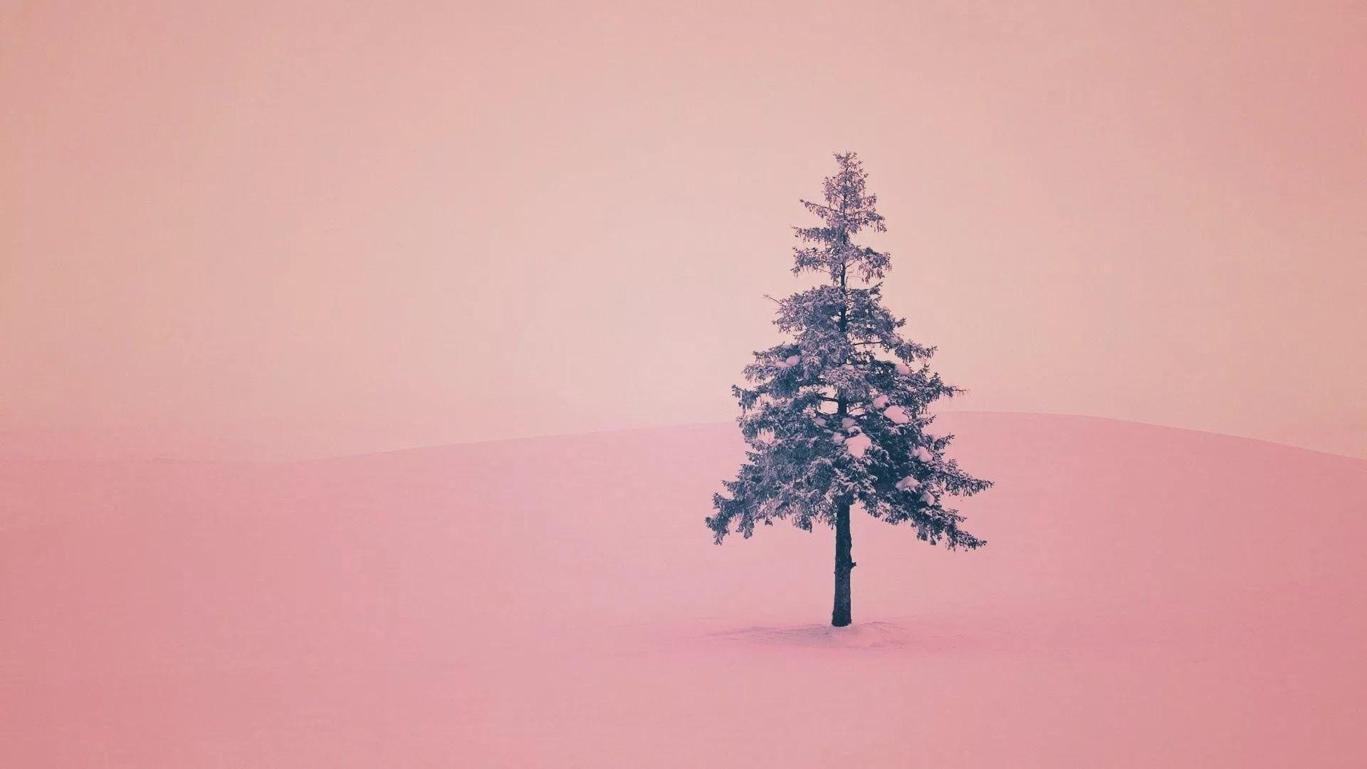 Cute Winter full hd 1080p wallpaper