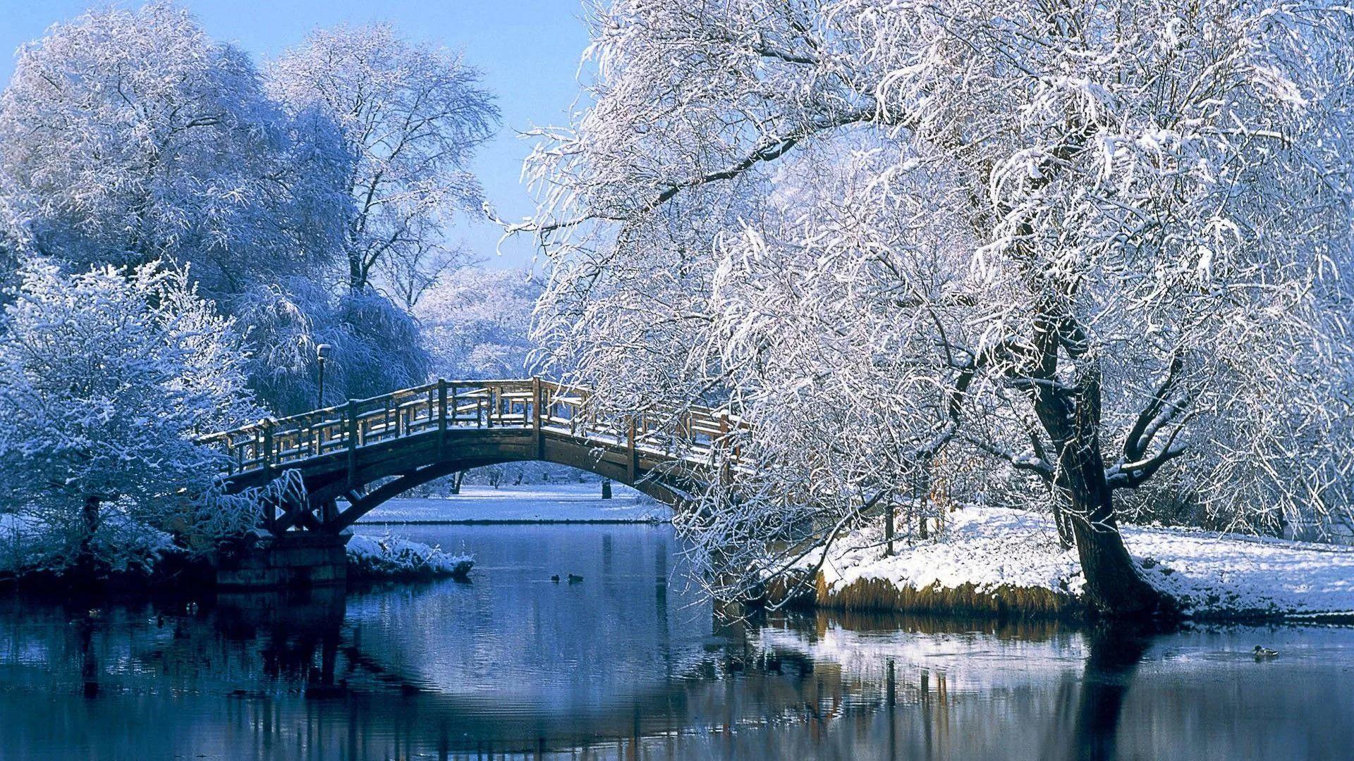 Cute Winter wallpaper theme