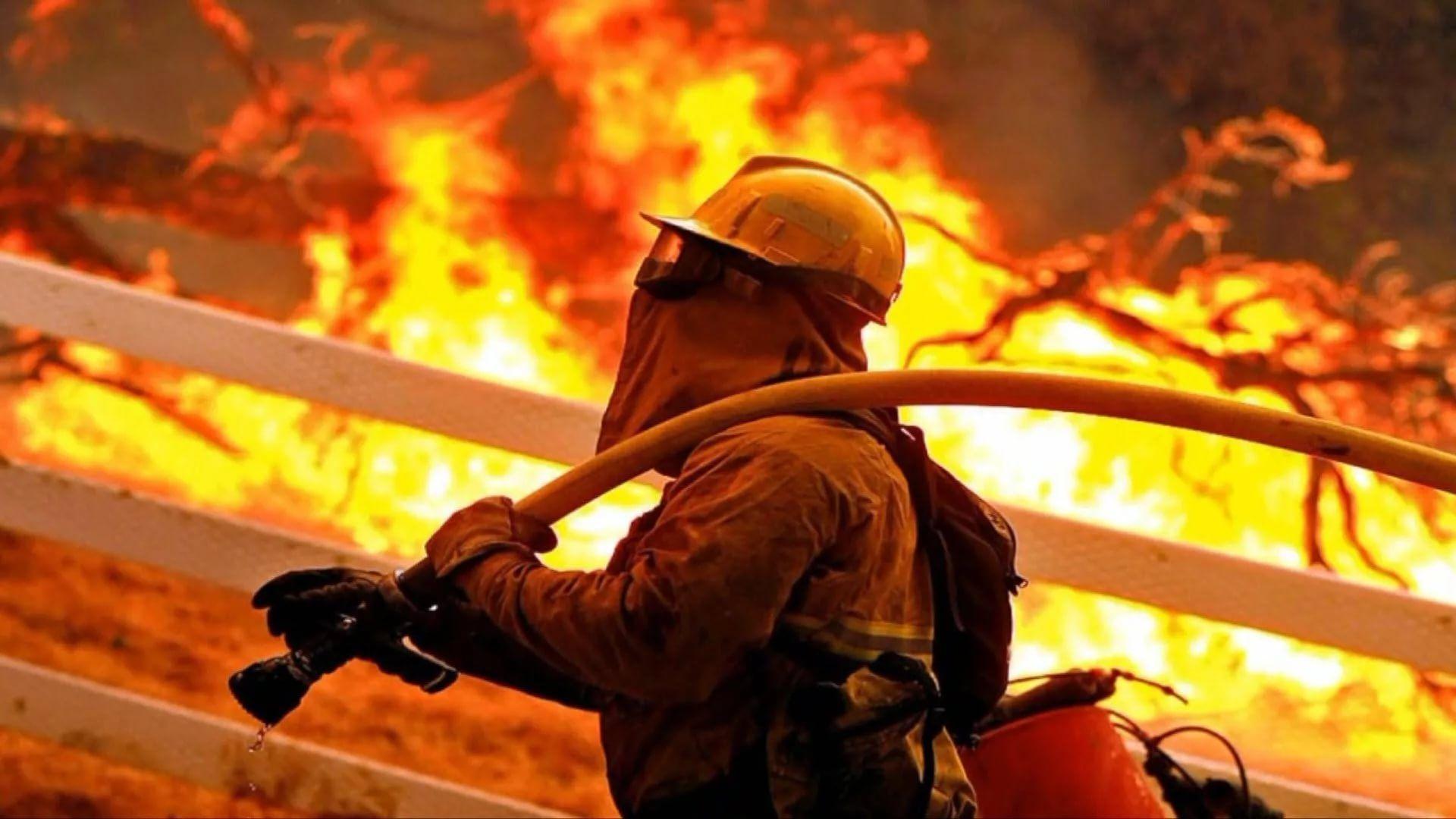 Firefighter free download wallpaper
