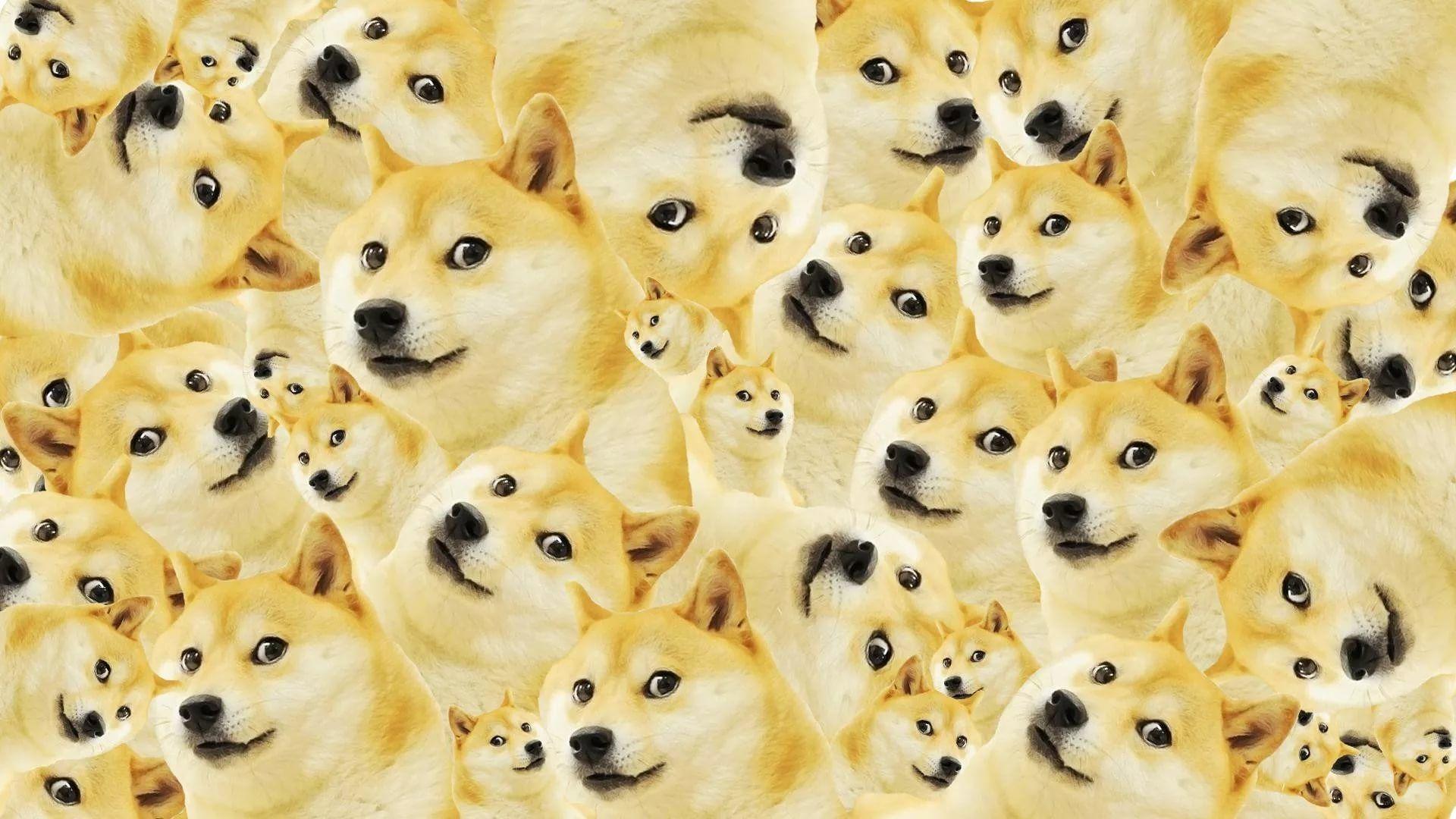 Meme download wallpaper image