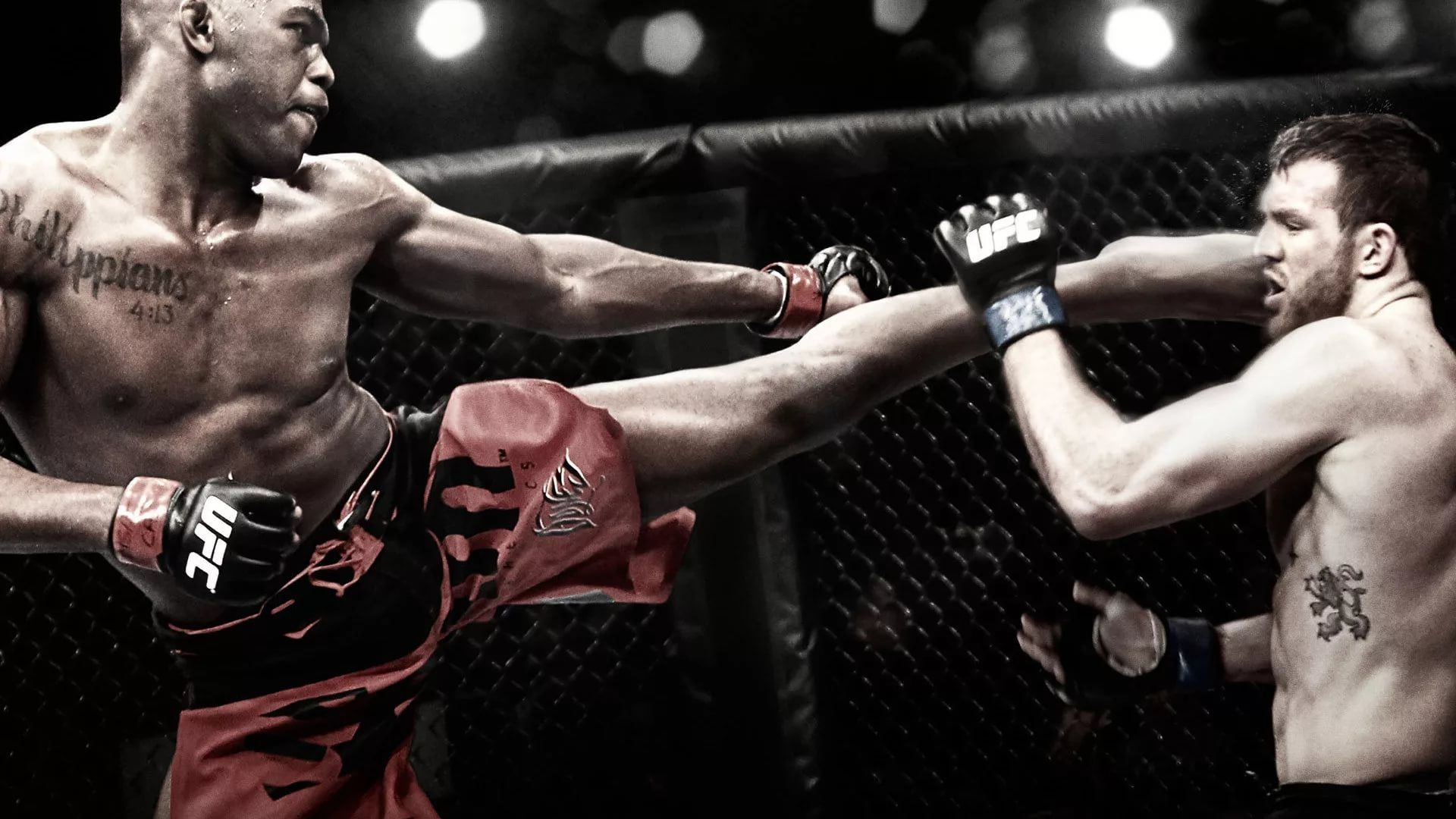MMA wallpaper photo