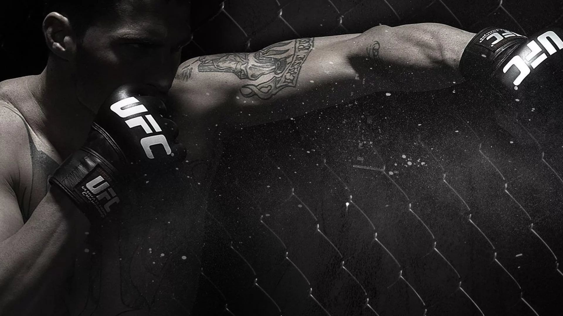 MMA Wallpaper