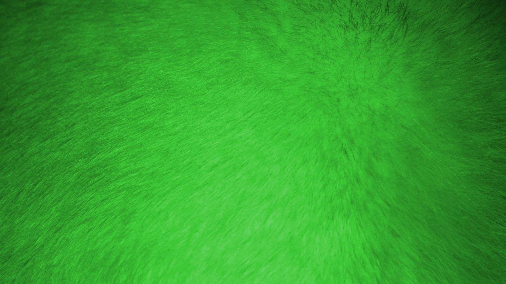 Neon Green good wallpaper