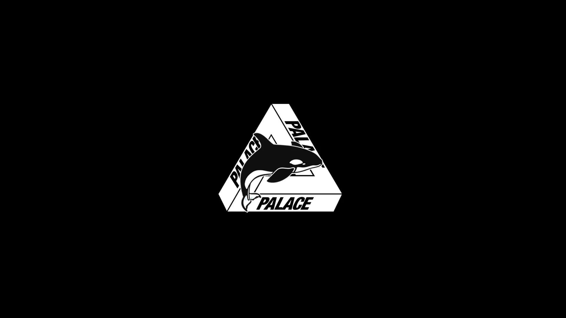 Palace Skateboards Free Wallpaper and Background