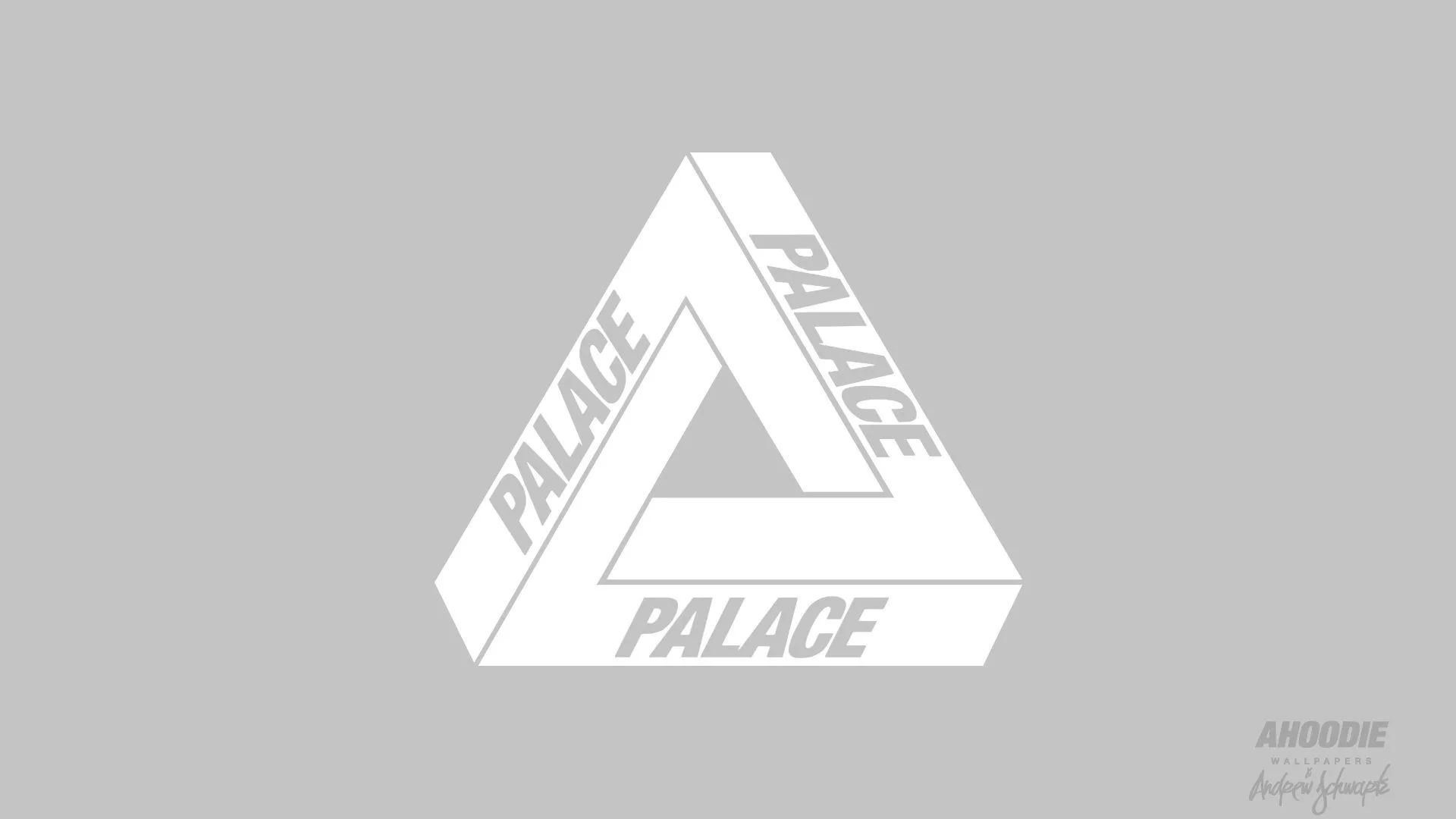 Palace Skateboards Picture