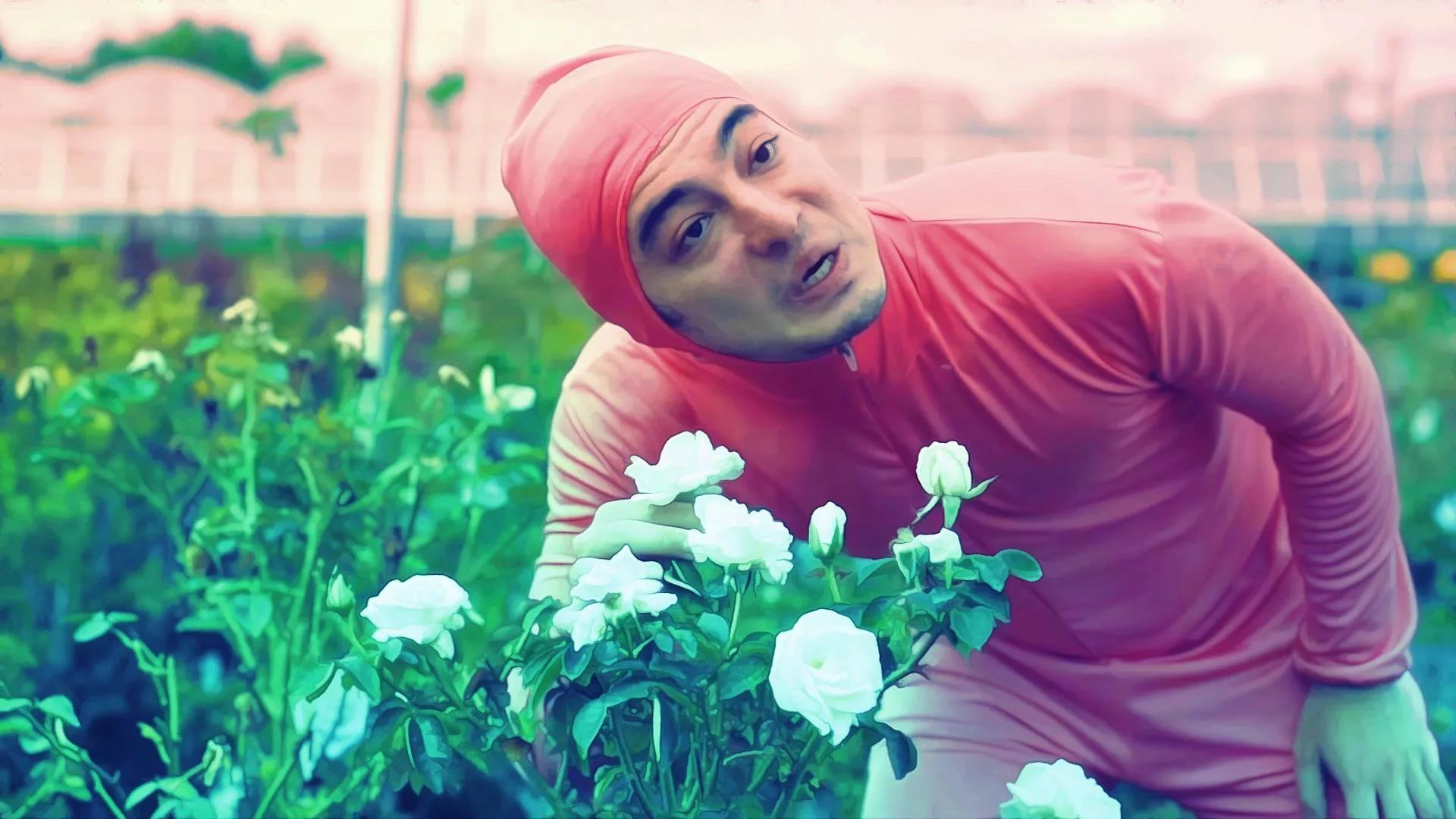 Pink Guy download wallpaper image