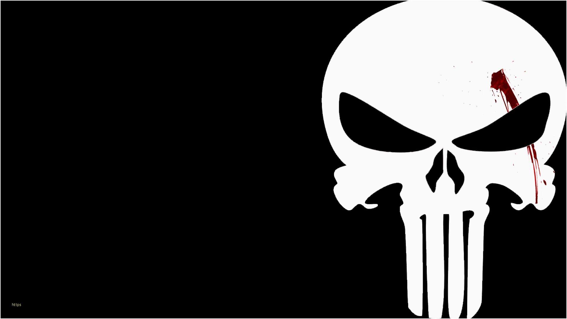 Punisher Skull Pic