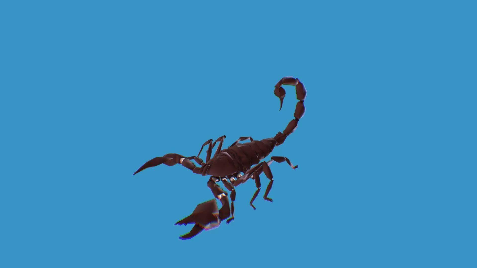 Scorpio Image