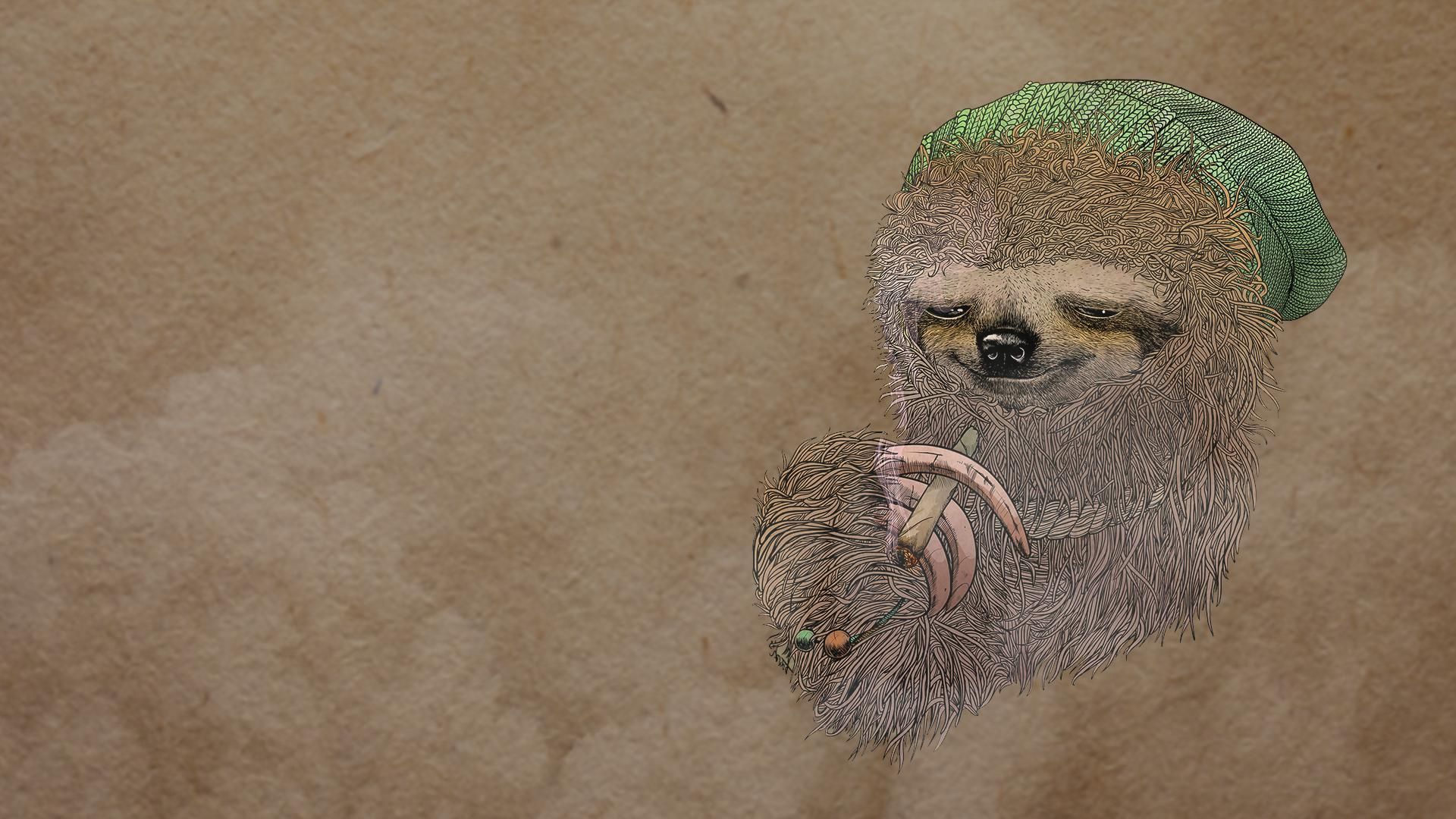 Sloth full hd 1080p wallpaper