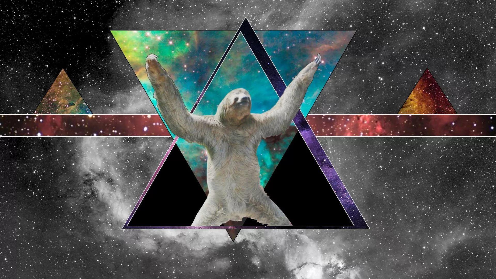 Sloth good wallpaper hd