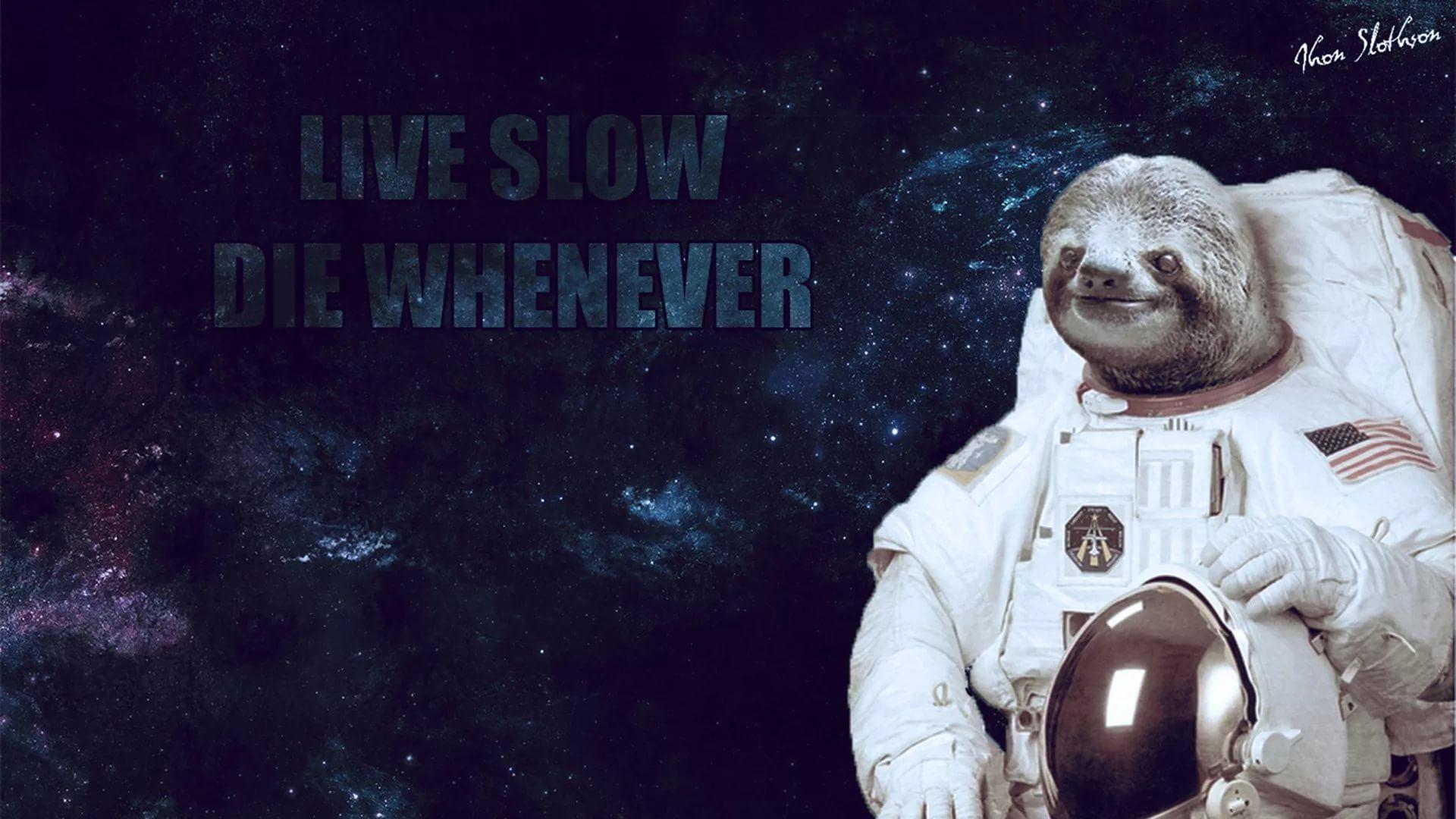 Sloth HD Download