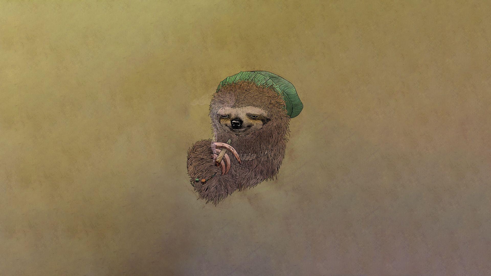 Sloth HD 1080 wallpaper