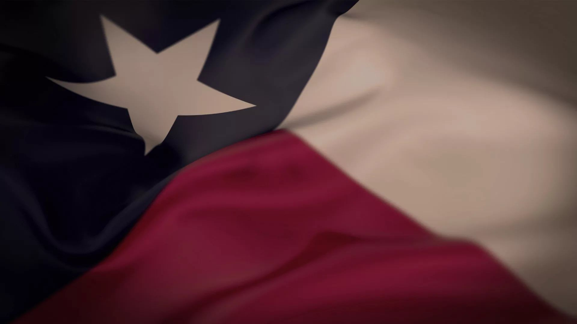 Texas Flag wallpaper photo