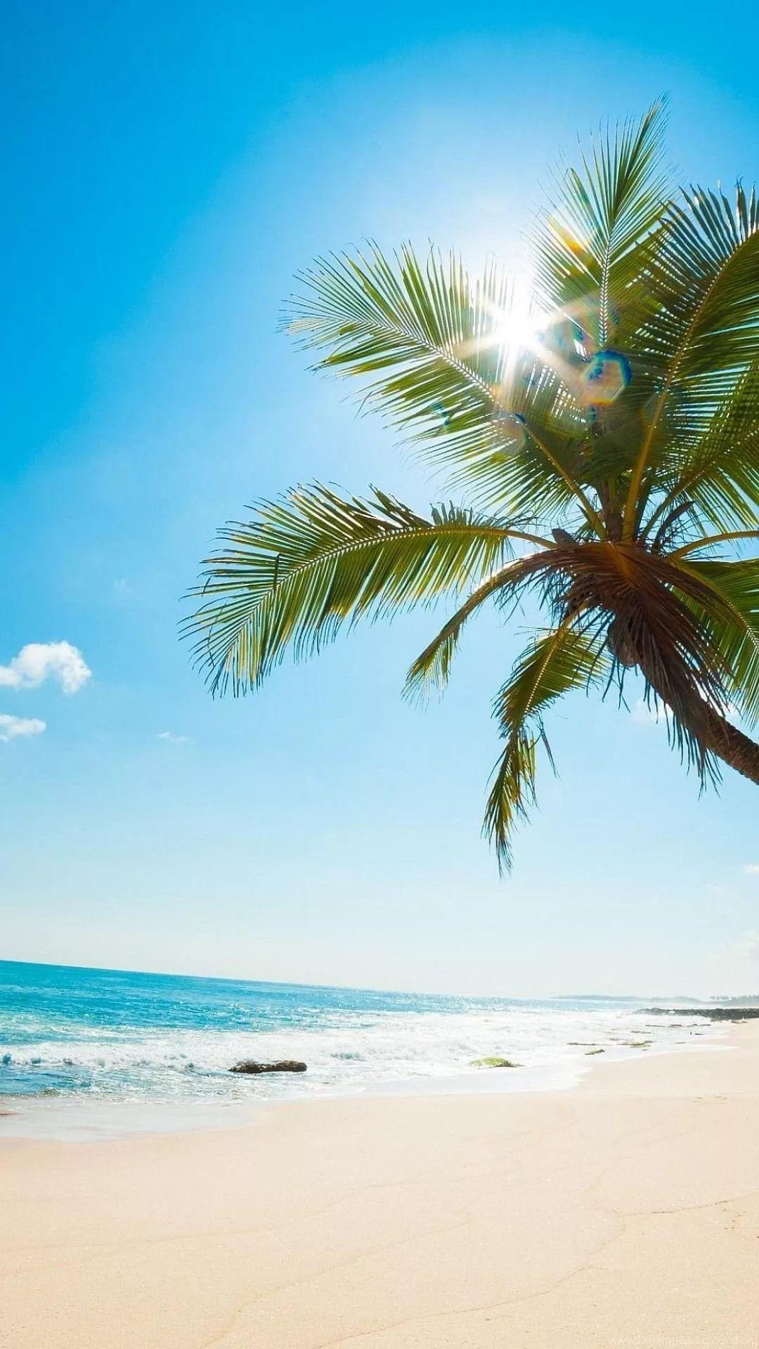 Beach iPhone 7 wallpaper