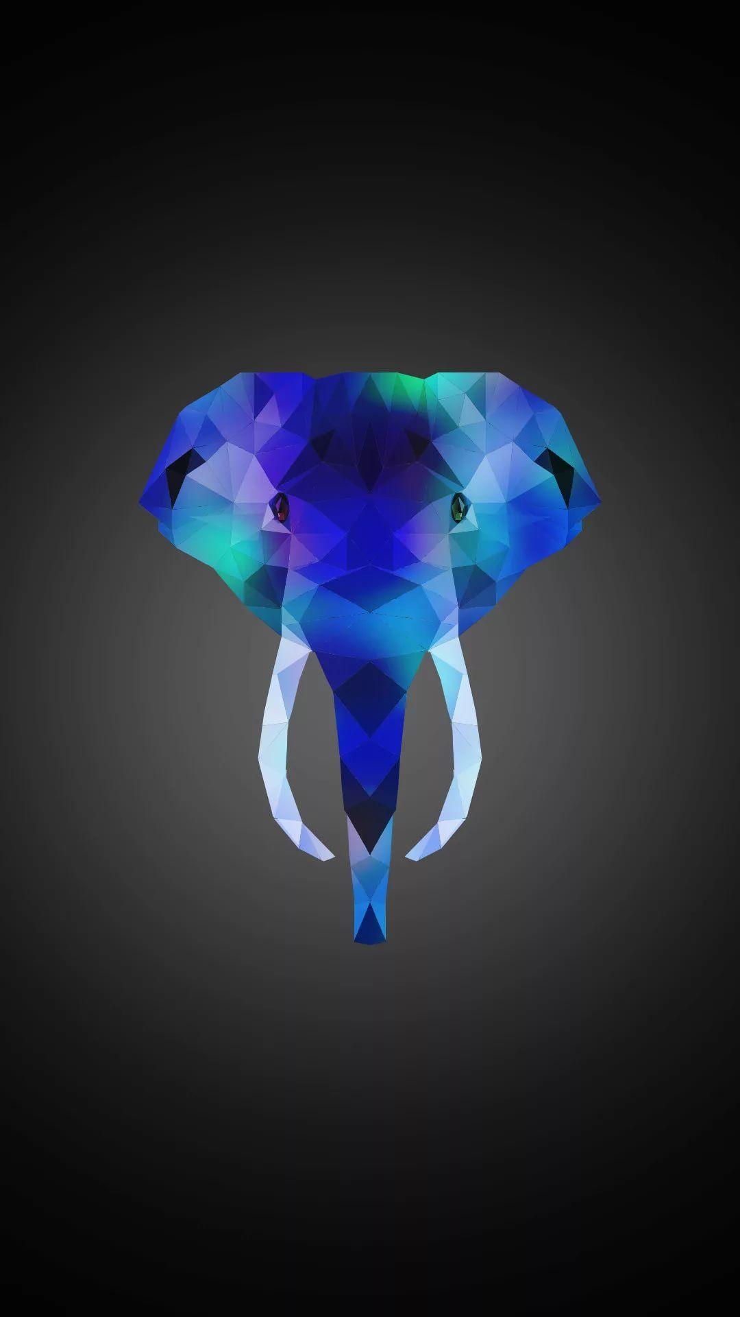 Elephant Tumblr iPhone 6 wallpaper