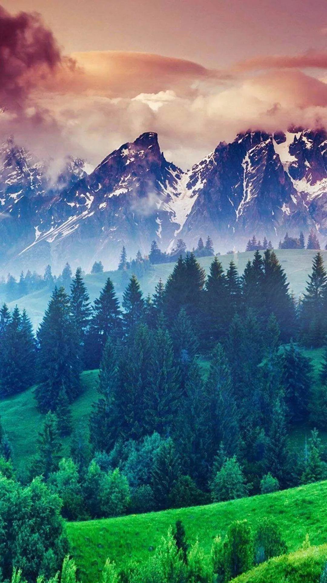 Nature Hd iPhone 6 wallpaper
