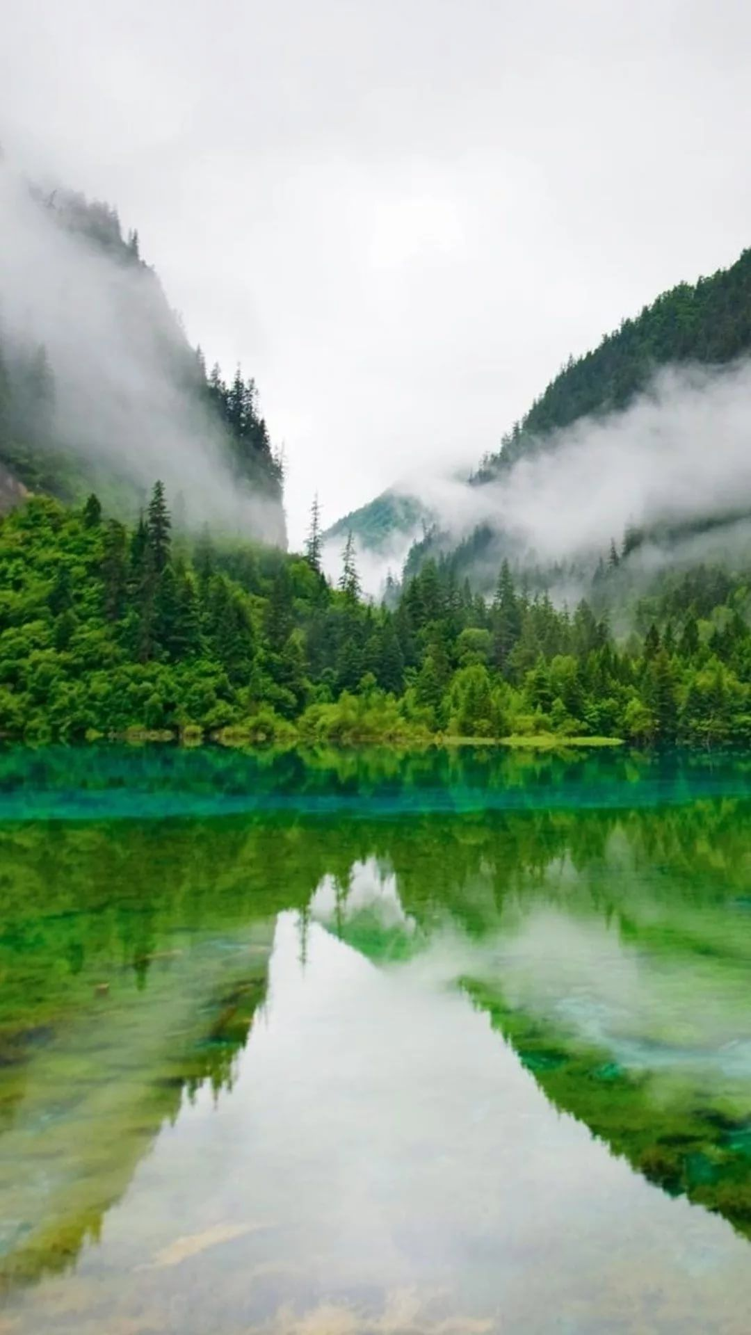 Nature Hd iPhone 5 wallpaper