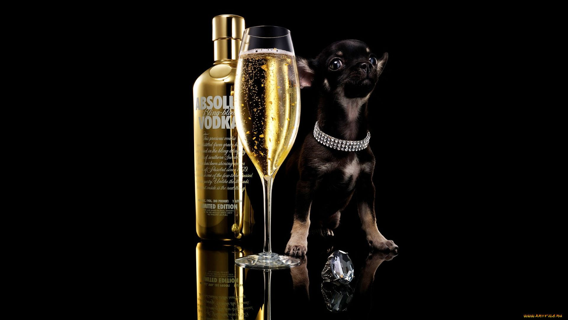 A Dog With Glass Of Vodka On Black Background