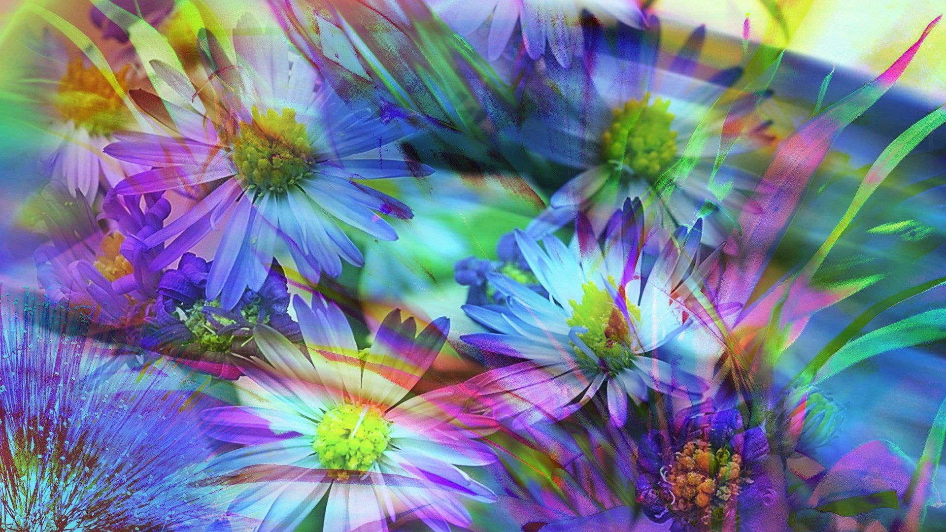 Abstraction, Flowers